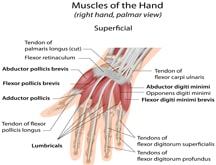 Hand Pain Treatment - 1